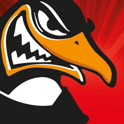 Szombathelyi Pingvinek Jégkorong Klub